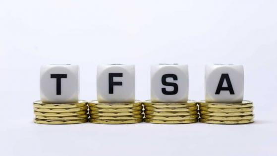 TFSA Investors: 2 Stock to Earn Tax-Free Dividends