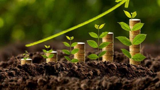 3 Top Growth Stocks if You Have a Longer Investment Horizon