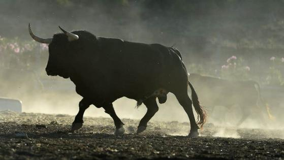 Ride the Bull Market in Energy With This Top TSX Stock